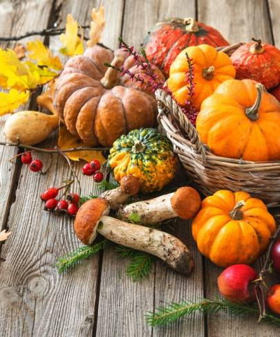 Eating Seasonally For Good Health